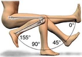 טווח התנועה בברך נורמלית